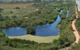 Ballona Freshwater Marsh